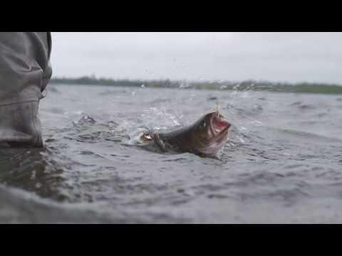Fly Fishing Newfoundland's Northern Peninsula