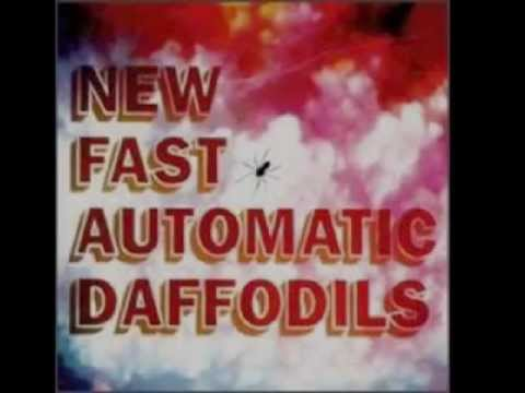 Beautiful - New Fast Automatic Daffodils (1992) March 2012 Update