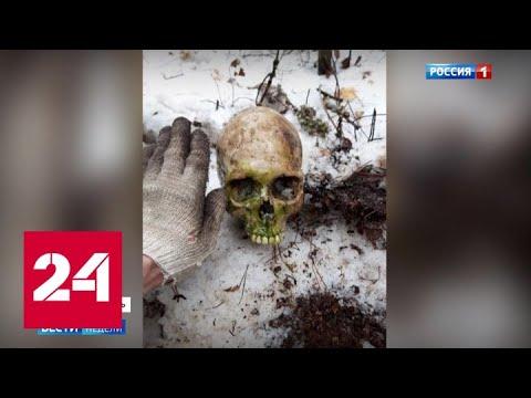 Дело Сети: Бесы наших дней - Россия 24