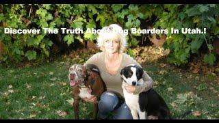 Dog Boarder Utah Free PDF By Amy Hiatt Slc Dog Sitter