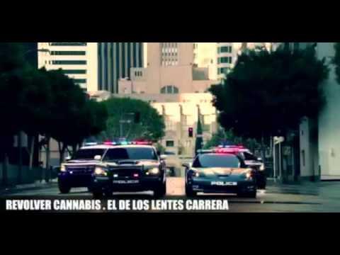 33595b0019 Revolver Cannabis- El De Los Lentes Carrera - YouTube