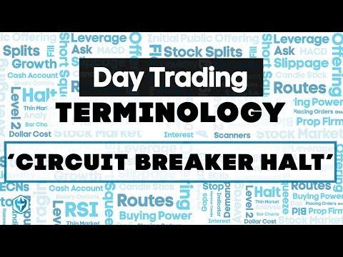 Circuit Breaker Halt Definition : Trading Terminology