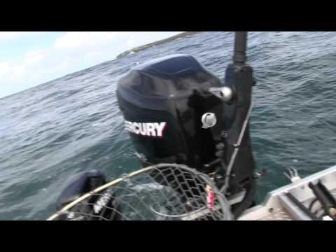 Tillamook Bay Springer Fishing and Rockfish