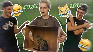 What's in the Box!? - Milan