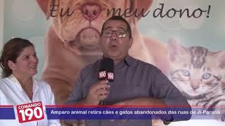 Reportagem Amparo Animal Ji-Paraná - Comando 190