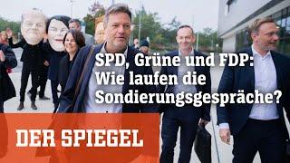 SPD, Grüne und FDP: Wie laufen die Sondierungsgespräche? - Livestream