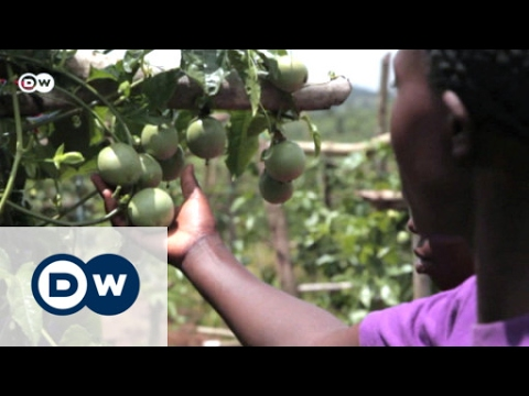 A passion for farming | Eco-at-Africa