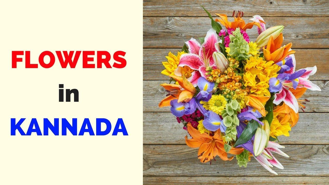 Flowers In Kannada Learn Kannada Youtube