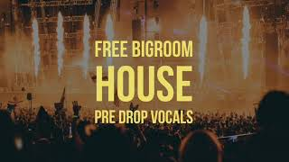 Free Bigroom House pre drop vocals sample pack