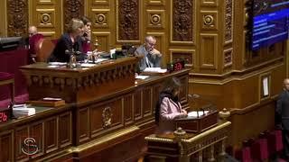 Intervention de Nathalie Goulet au Sénat au sujet du projet de loi 2018 Mission économie