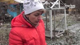 видео Обрезка пионов осенью