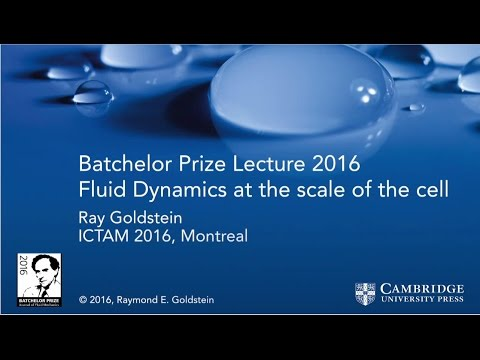 Professor Raymond Goldstein, Batchelor Prize lecture 2016