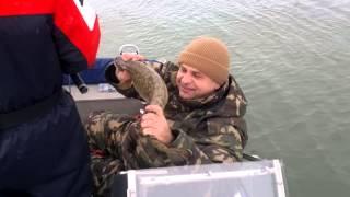 Налим на иртыше.(Отчет с рыбалки. Спиннинг клуб