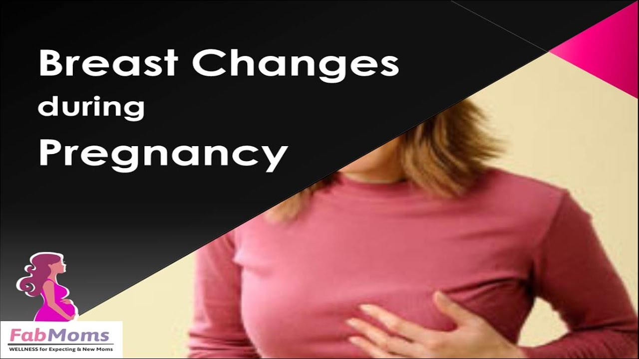 Breast Changes During Pregnancy  5 Tips For Breast Care -2945