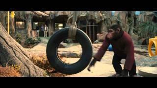 Maymunlar Cehennemi  Başlangıç  Türkçe Dublajlı Fragman
