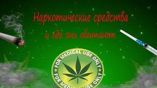 Наркотические вещества и где они обитают