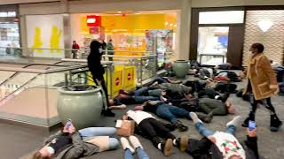 Die In at Mayfair Mall for Alvin Cole