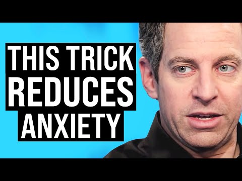 how-to-instantly-achieve-a-calm-state-|-sam-harris-on-impact-theory