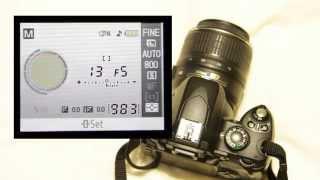 Intro to the Nikon D40 DSLR (One From Zero)