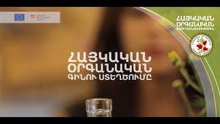 Հայկական օրգանական գինու ստեղծումը