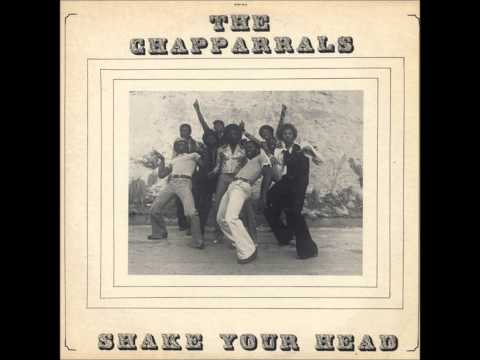 THE CHAPPARRALS   SHAKE YOUR HEAD
