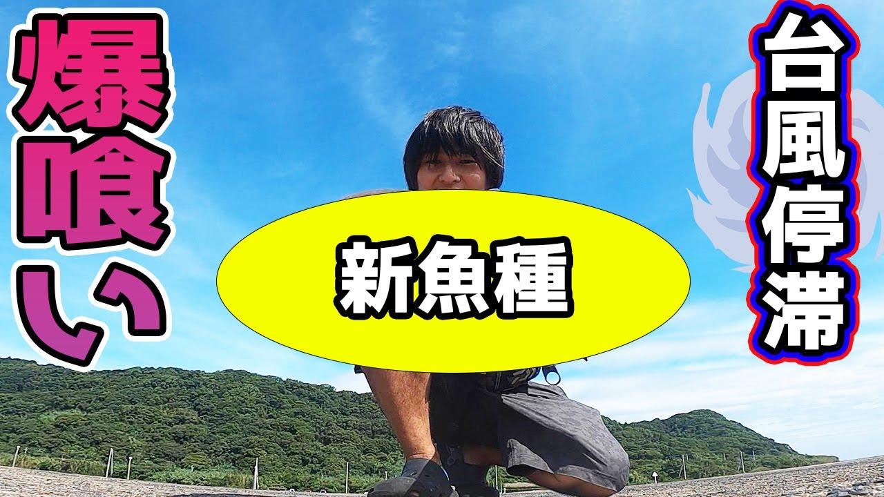 【離島生活】台風停滞で海の中がパラダイス?!