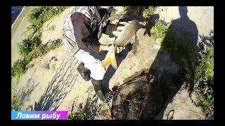Бешеный клев толстолоба и карпа часть 2! Неожиданная рыбалка!  Такого я еще не видил! best fishing