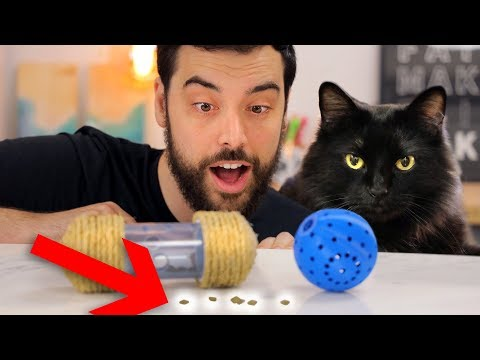 Make Your Cat a Lovely Little... Foraging Toy!
