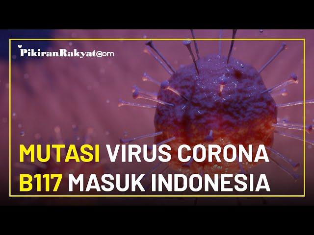 Mutasi Virus Corona B117 Masuk Indonesia, Pemerintah Ambil Langkah Cegah Penyebaran