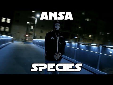 ANSA - Species