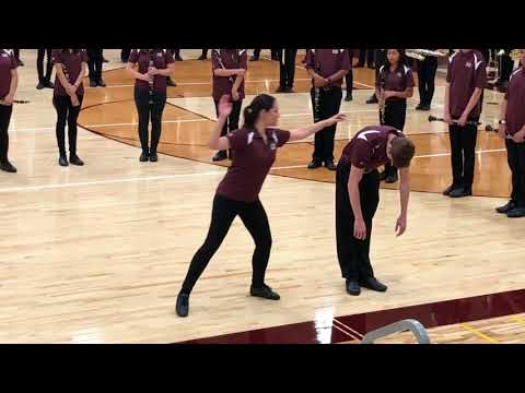 Elgin High School Marching Band October 19, 2017