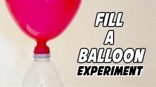 Fill Up A Balloon With A Chemical Reaction!
