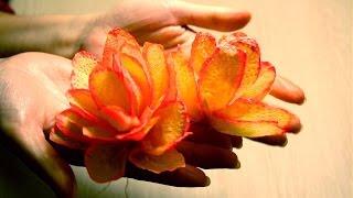 Цветы из бумаги. Бегония(цветы из бумаги, цветок из бумаги, цветы из бумаги своими руками, цветок из бумаги своими руками, цветы..., 2015-03-01T20:10:08.000Z)