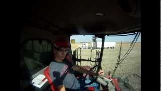 case ih 8230 combine unloading on the go  pete 379   clips