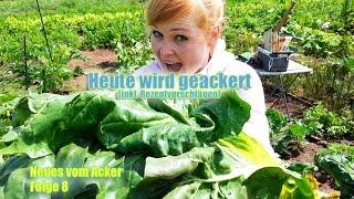 NEUES VOM ACKER Folge 8 - Heute wird geackert | Bio-Gemüse selber anbauen [Neues vom Acker] 2014 Thumbnail
