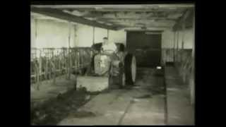 The Massey Ferguson Archive Series - Volume 2 The Little Grey Fergie (Trailer for DVD)