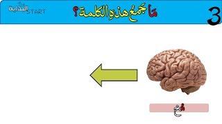 ما جمع هذه الكلمات؟  تحدي جمع كلمات باللغة العربية