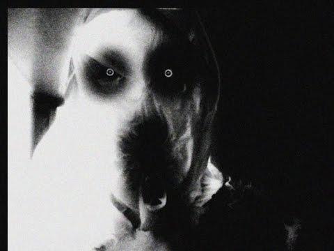 Смотреть клип Жесткая психоделика (строго 18+) онлайн бесплатно в качестве