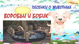 Воробьи и Бобик Песенки про животных Котенок, Щенок, Пони