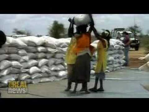 Food shortages threaten 100 million