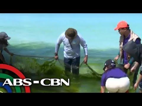 TV Patrol: Mga residente, nakiisa sa paglilinis ng Boracay