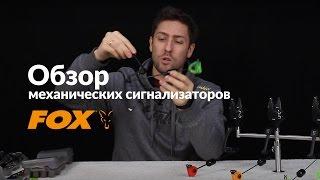 Карпфишинг TV :: Обзор свингеров FOX