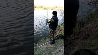 Рыбалка на карпа весной 2021 Падарочный карп