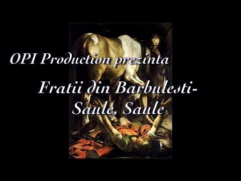 Fratii din Barbulesti - Saule, Saule.. Pentru ce ma prigonesti [Official Video] (2018)