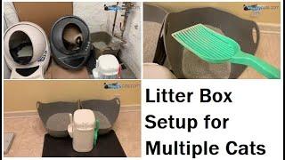 Litter Box Setup for Multiple Cats: LR3, LitterLocker and NVR Miss- ねこ - ラグドール - = ネコ - Floppycats
