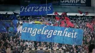 SG Flensburg-Handewitt - UNVERGLEICHLICH