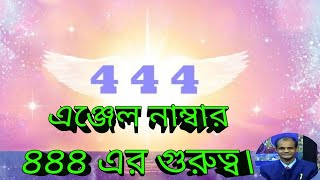 4444 angel number video clip