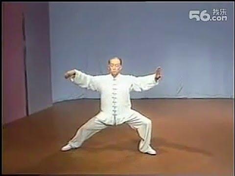 Chen Taijiquan. Master Lingzhi An (凌志安)