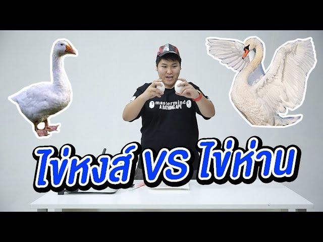 กินไข่หงส์ vs ไข่ห่าน - เพลินพุง EP.42
