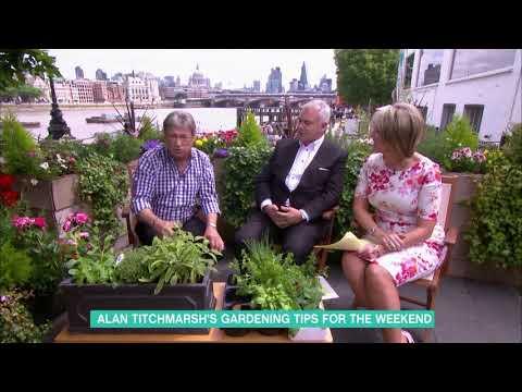 Alan Titchmarsh's Gardening Tips   This Morning